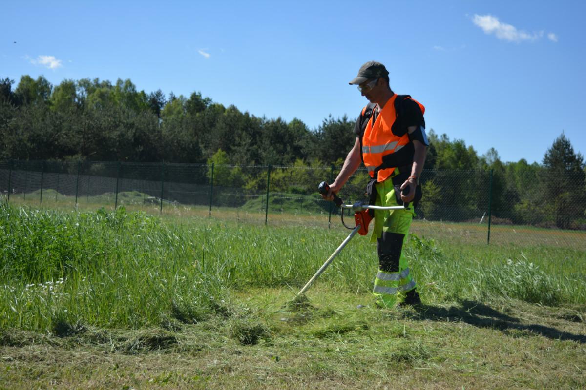 CIS pracownia ogrodnicza