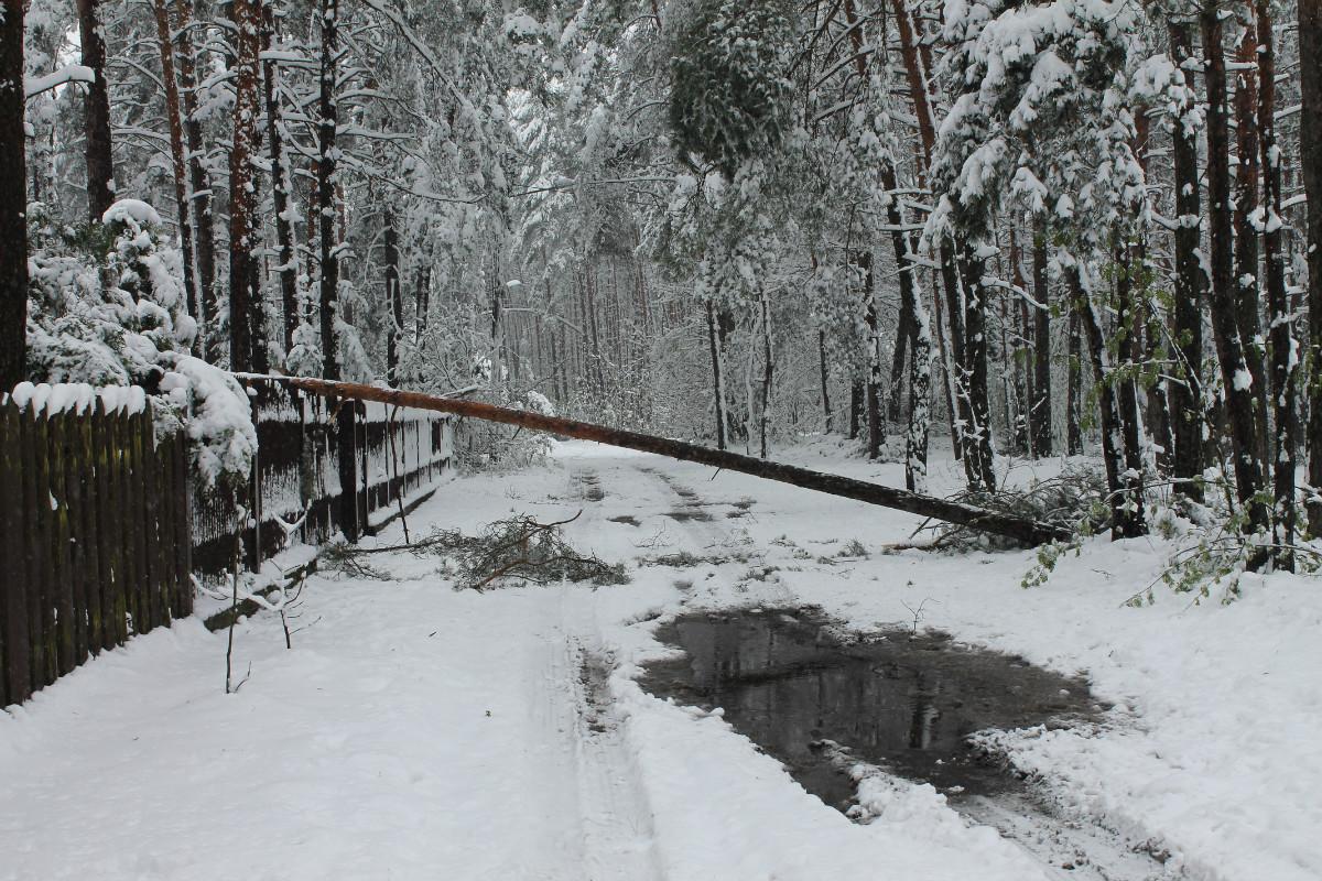 Opady mokrego śniegu, utrudnienia na drogach i zerwane sieci energetyczne w Gminie Poraj